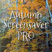 Autumn Screensaver Pro